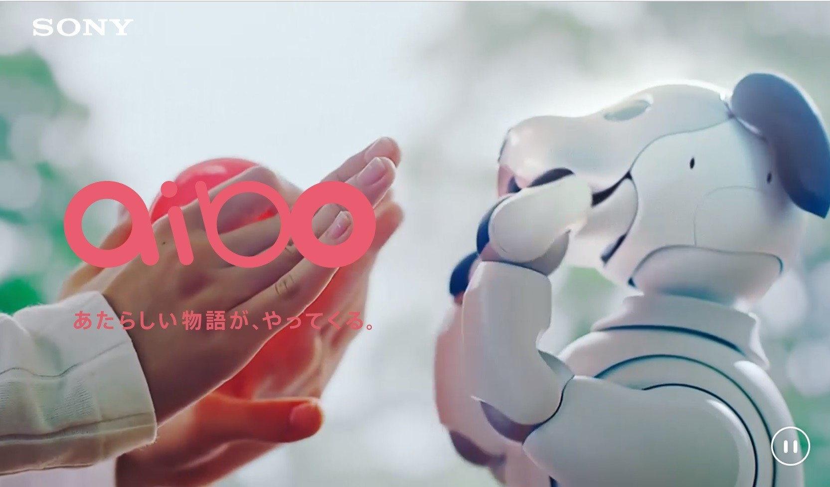 """是""""相棒""""復活, Sony 宣布更聰明、會成長的新一代 Aibo 將在 2018 年初上市這篇文章的第1圖"""