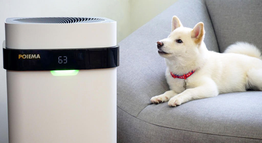 是POIEMA空氣淨化器開箱實測 癮科技辦公室空氣品質殘酷大考驗這篇文章的首圖