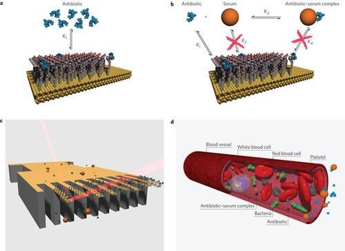 是奈米感應晶片新應用,客製化抗生素種類、劑量並有助於後續新藥研發這篇文章的首圖