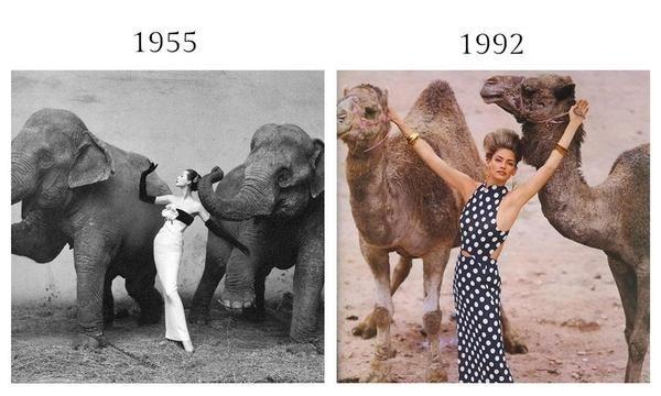 是應該是傳承不是抄襲 跨越超過50年的照片重拍這篇文章的首圖