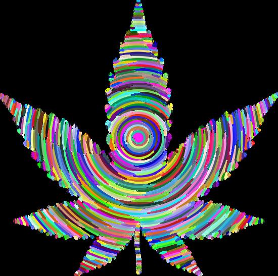 是大麻天堂荷蘭總理說:現在販售的大麻更強勁,別碰!這篇文章的首圖