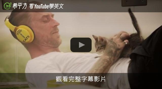是壓力大嗎?試試貓咪紓壓法這篇文章的首圖