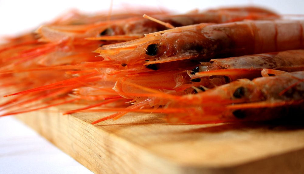 是為什麼蝦子煮熟後會變色?這篇文章的首圖